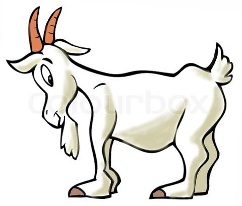 Angus the Tartan Goat ... Goat Animation
